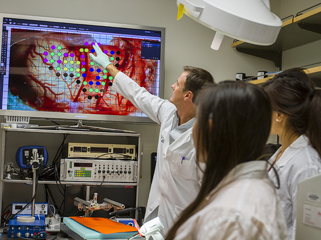 ASU neuroscientist Jeffrey Kleim and biomedical engineering students Lisa Irimata (left) and Jessica Schiltz examine a mapped image of a brain cortex so they can study differences in the brain before and after a stroke. Photographer: Jessica Hochreiter/ASU