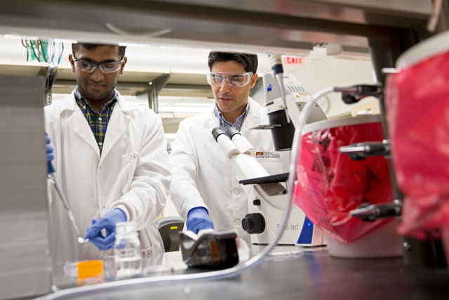 Nitish Peela working alongside assistant professor Mehdi Nikkhah in the Nikkhah Lab. Their research focuses on creating 3-D breast tumor models on a chip.