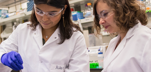 Apply for undergraduate research funding with FURI by May 1 — deadline extended!